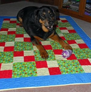 Nina Plays on Comfort Quilt