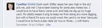 Millie replies on facebook
