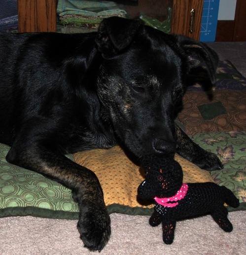 Millie sniffing Mini Millie