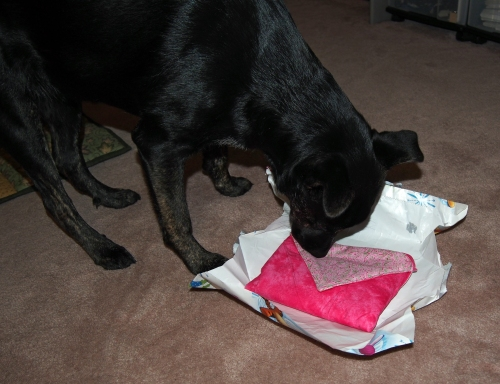 Millie - checking out bag from Agnes