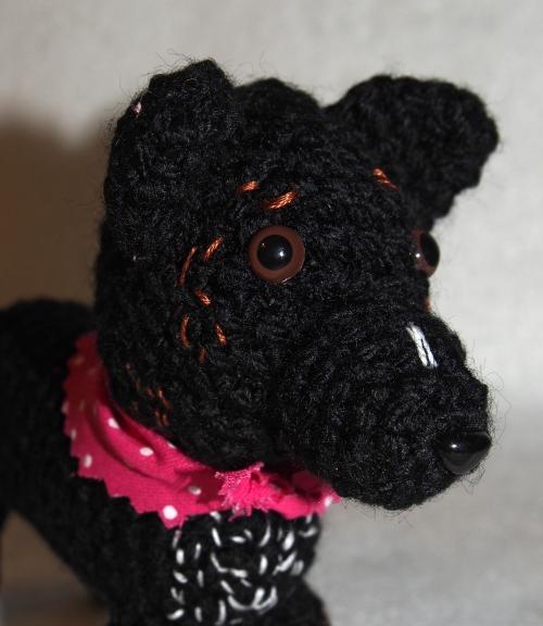Mini Millie - head shot close up