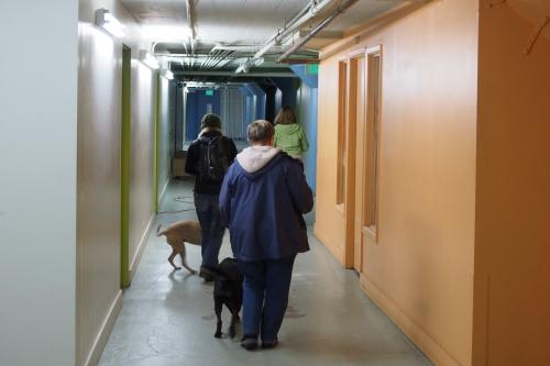 Village Gate - walking down the hall - Millie