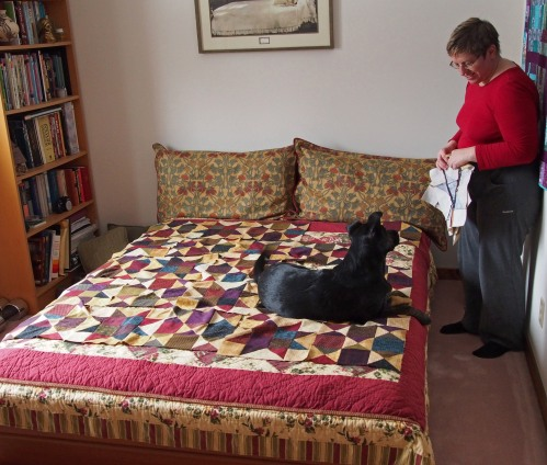 flannel quilt - millie helps with layout