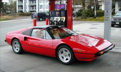 gassing up the Ferrari