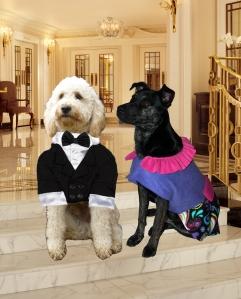 Stanley & Millie