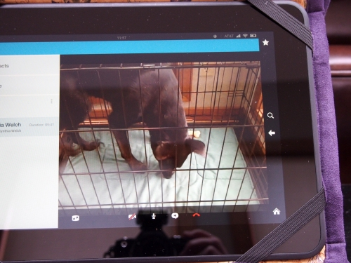 Millie - Watching through skype