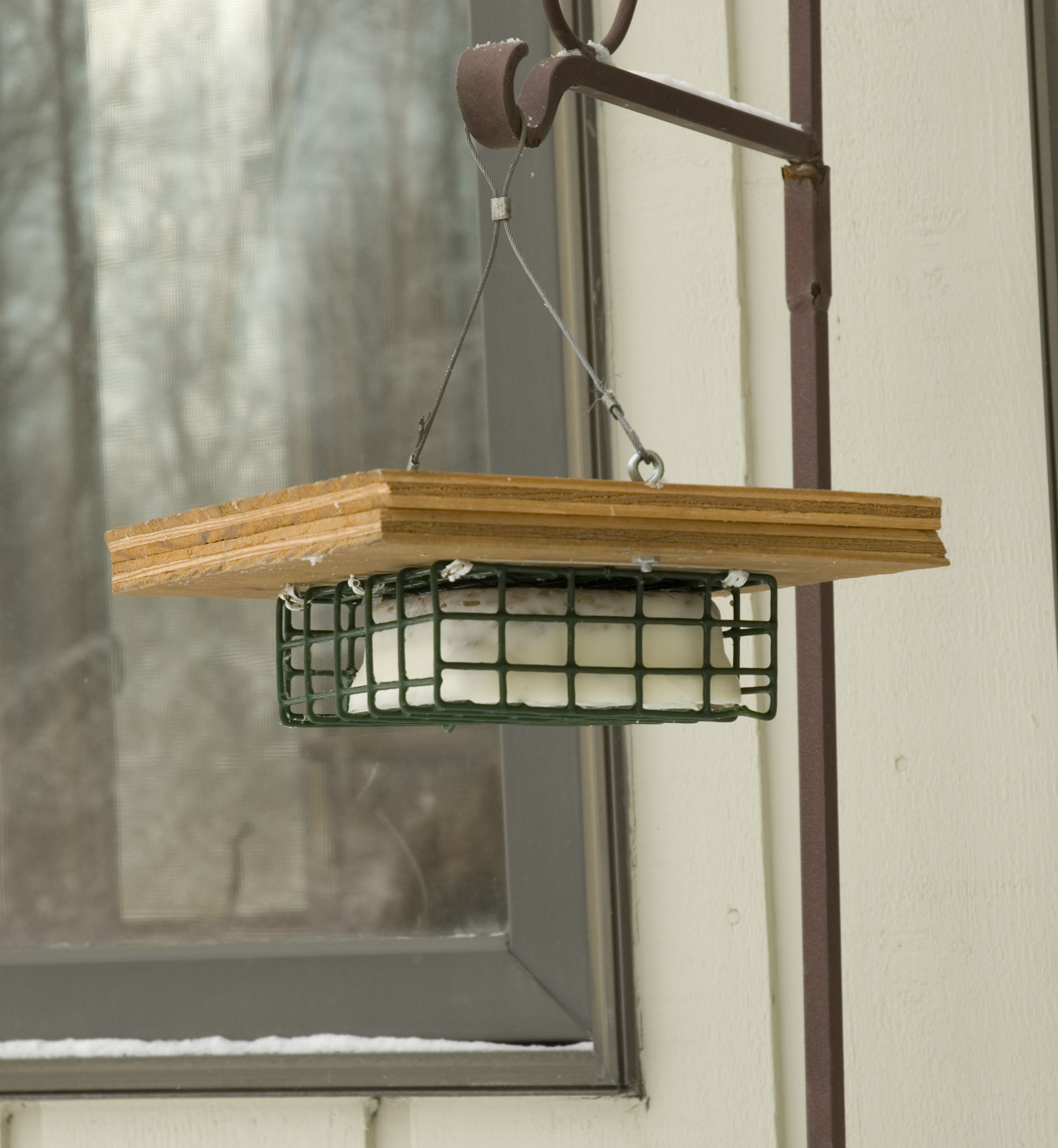 Crow Flying Upside Down Filled Hanging Suet Feeder