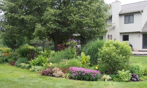 perennial garden - from north