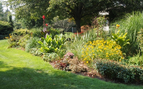 View of perennial garden