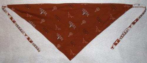 Texas bandana - with border - back side