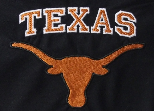 Texas Logo detail