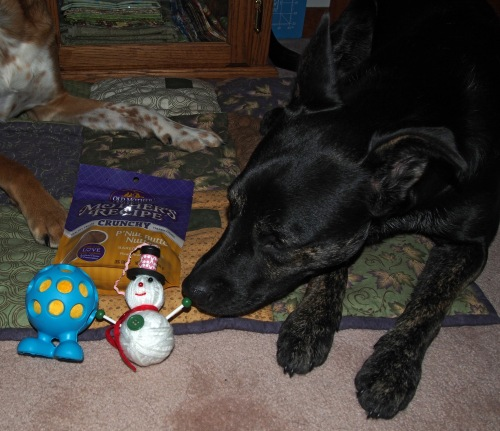 Millie checking out pressies from Jacque