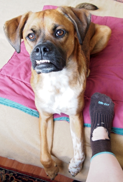 What are you talking about Mom? I thought you liked air conditioned socks.