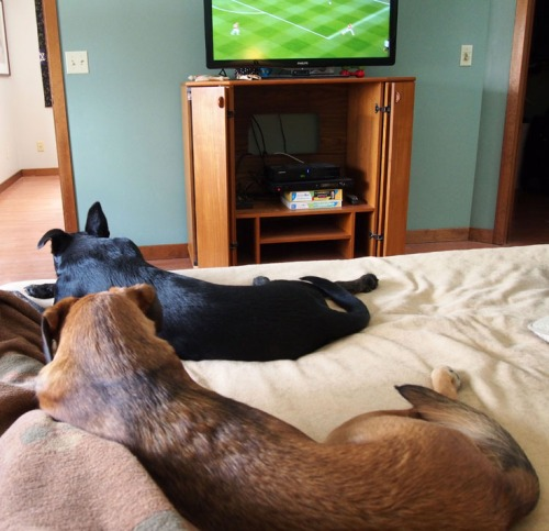 Watching soccer on a Saturday morning