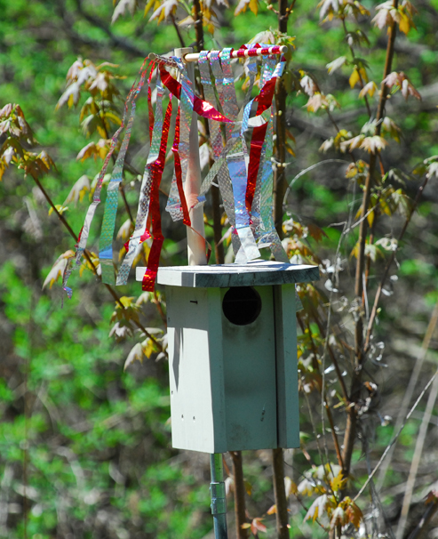 Bluebird House with Sparrow Spooker