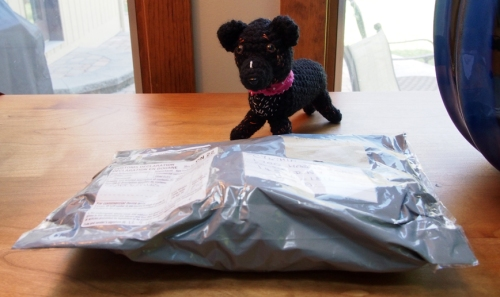 Mini Millie - inspects mail