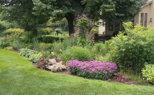 perennial garden 1