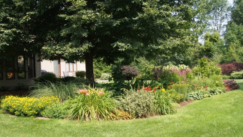 South East view of perennial garden