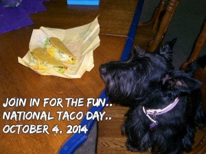 BeFunky_jazzi with tacos