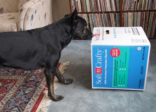 Millie - sniffing box