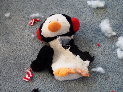 R.I.P. Mr. Penguin