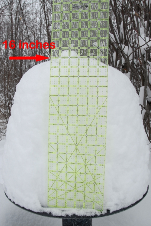 Snow is 16 inches (40+ cm) deep on top of our bird bath.