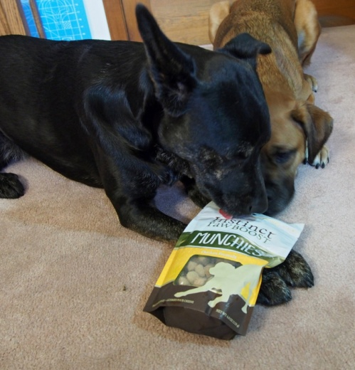 These treats smell delish! The bag even tastes good.