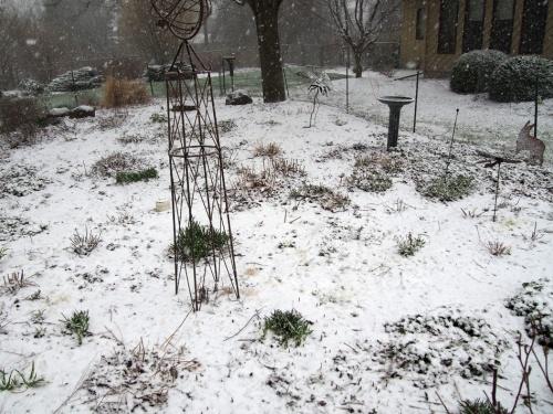 Perennial Garden Coverd in Snoe