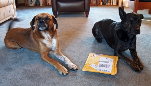 If you don't look at it Millie maybe mom will open it for us.