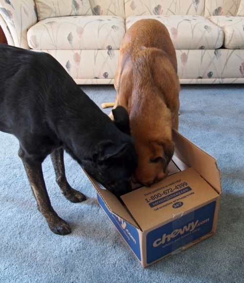 What's in here Walter I don't know but it sure smells great!