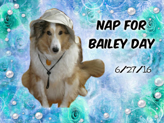 Nap For Bailey Badge