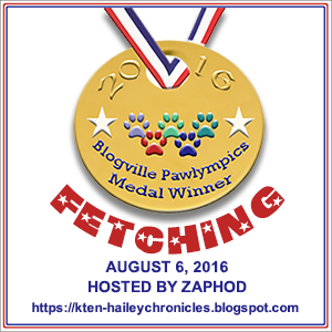 Fetching Zaphod - medal