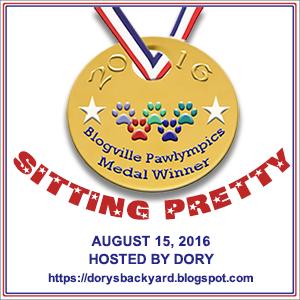 Sitting Pretty Dory Medal