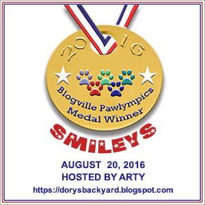 Smileys, Arty Medal