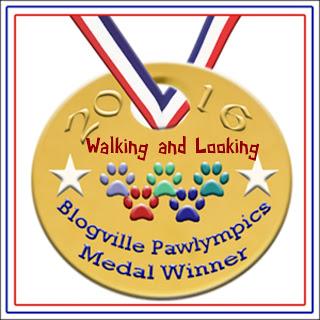 Walking and looking medal