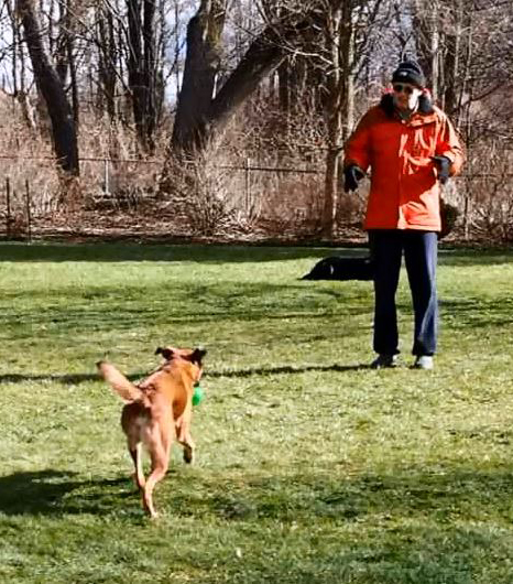 You can't really fetch without someone throwing something first. Thanks for helping Dad.