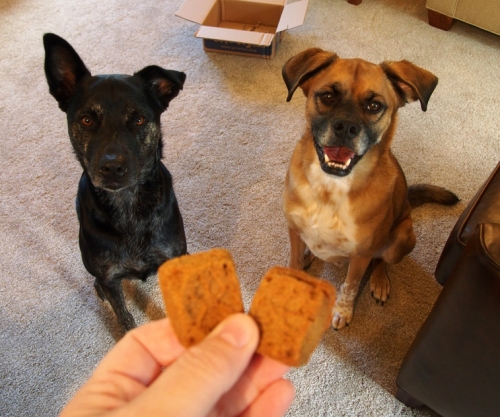 Hand over the biscuits already mom!