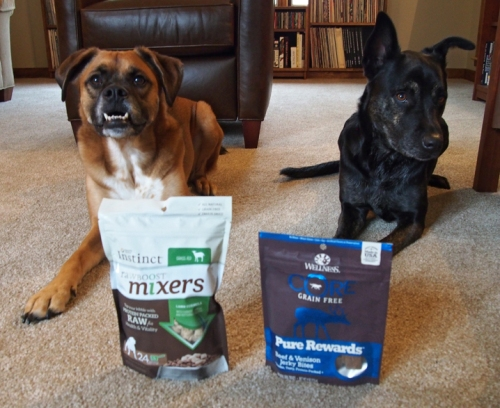 I was really looking forward to tasting these jerky bites. Do you think the foster dogs will like these mom?