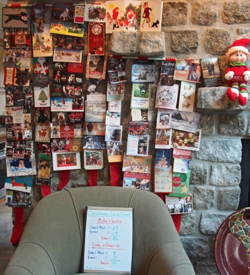 Final card count and display - Christmas 2016